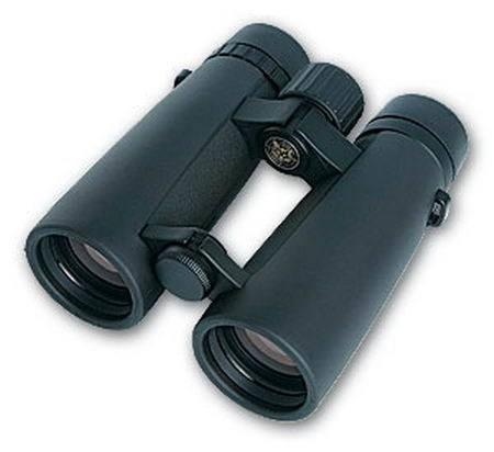 Lynx 10x42mm. Black rubber